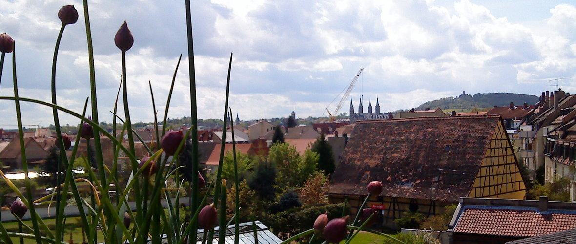 Bamberg (looking from the gardening quarter towards the Old Town)